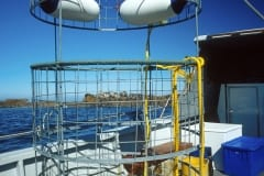 Shark cage on the boat